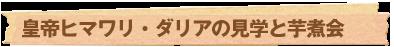 皇帝ヒマワリ・ダリアの見学と芋煮会